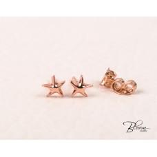 Tiny Sea Stars Stud Earrings 14K Rose Gold Bloom Jewellery